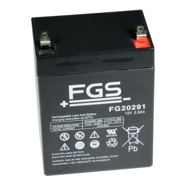 FGS Bleiakku FG20291 12V 2,9Ah