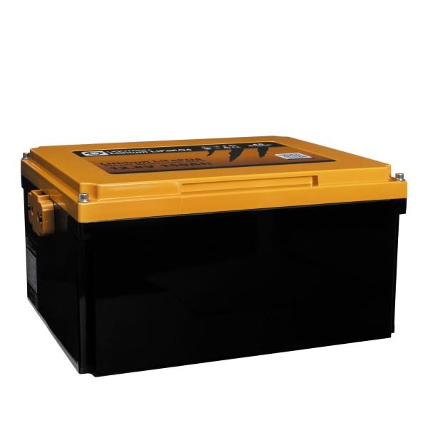LIONTRON LiFePO4 Smart BMS 12,8V 150Ah Untersitzbatterie